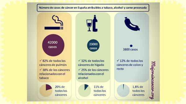alimentos prevención cancer