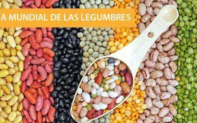 Nos sumamos al día mundial de las legumbres