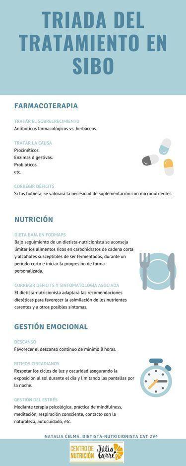 infografia tratamiento SIBO