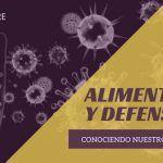 Alimentación y sistema inmune: Conociendo nuestro sistema de defensas