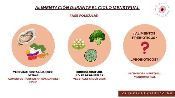 fase menstrual folicular